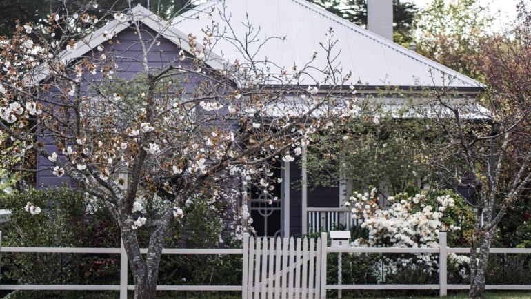 3 Steps To Take Before Building a Fence on your Property
